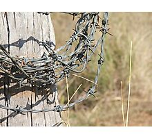 Roll Of Barbed Wire Photographic Print