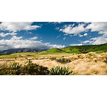 panoramic view of hills at catlins Photographic Print