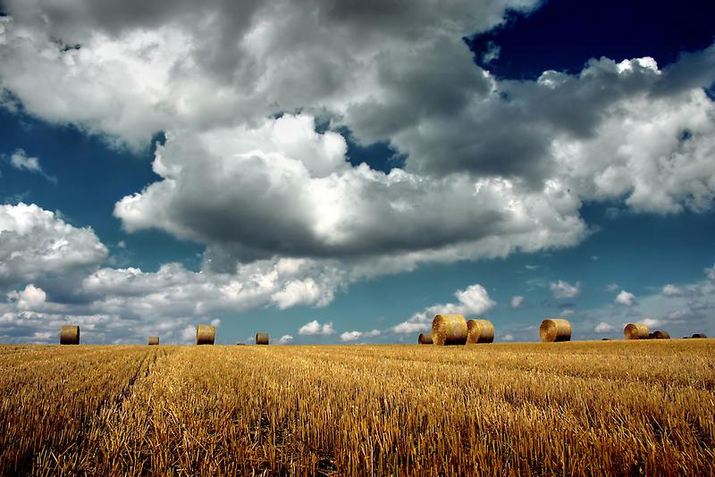 hay bales by imaginaryfriend