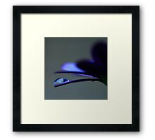 Colour Of Life XXXVIII Framed Print