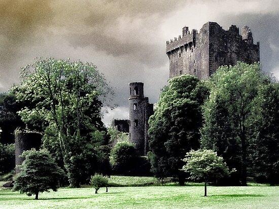 Blarney Castle by Garth  Helms