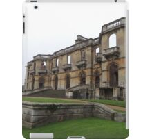 Surviving and Thriving iPad Case/Skin