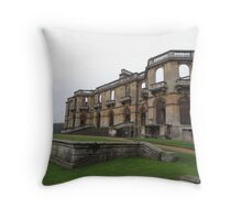Surviving and Thriving Throw Pillow
