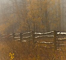 Country Fence Misty Style by peaceofthenorth