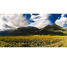 rural scenery in new zealand Photographic Print