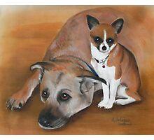 Bently & Tia in pastel  Photographic Print