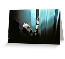 Let Me In! Greeting Card
