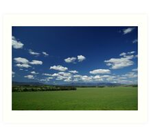 View from Yering Station Winery Art Print