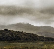 Untitled- Ireland by Garth  Helms