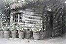 The Potting Shed by Elaine Teague