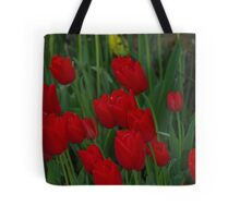 Red Tulips, Australia Tote Bag