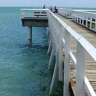 Scarness Jetty, Hervey Bay, Qld, Australia by Sandra  Sengstock-Miller