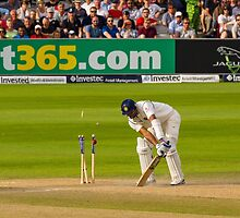 Bowled by TomGreenPhotos