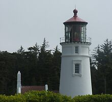 Umpqua River Lighthouse by Edith Farrell