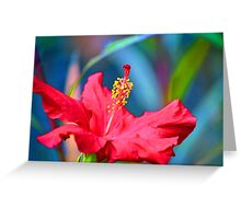 Red abstract hibiscus Greeting Card