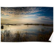 Morning Sawgrass Poster