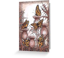 Smaller Monarch butterflies and  spear thistles Greeting Card