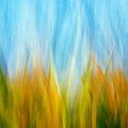 september corn field by imaginaryfriend