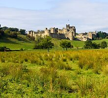 Alnwick Castle by TomGreenPhotos