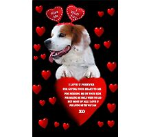 ♥♥I LOVE U FOREVER♥♥♥CANINES VALENTINES CARD AND OR PICTURE♥♥ Photographic Print