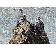 Sea Foam Flurry Photographic Print