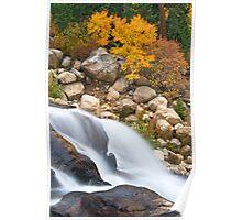 Golden Falls Poster