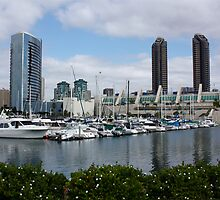Marina at the San Diego Convention Center by Jan  Wall
