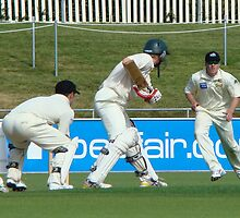 Cricket Match, watch the ball by Sharon Robertson