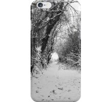 Lane in the snow iPhone Case/Skin