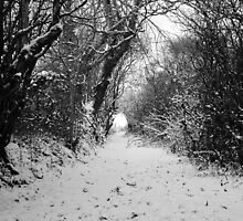 Lane in the snow by JacquiHall