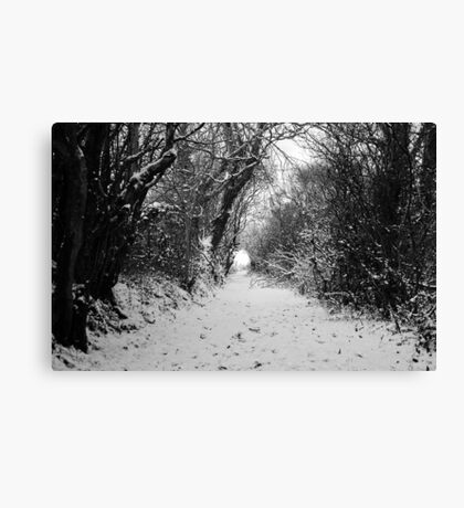 Lane in the snow Canvas Print