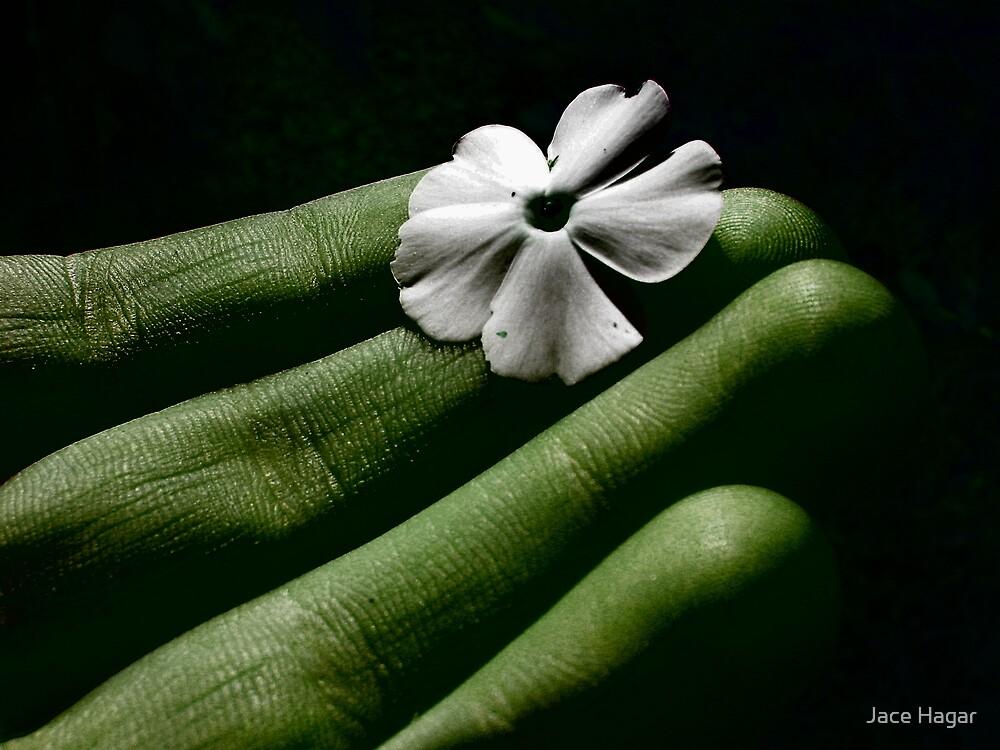 Untitled by Jace Hagar