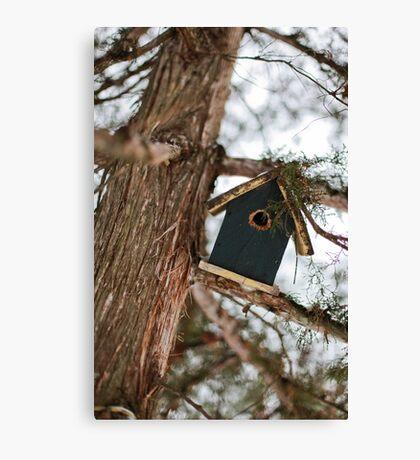 The little bird house Canvas Print