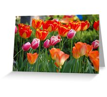 Colourful Friends Greeting Card