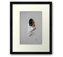Feather & shadow #3 Framed Print