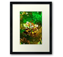The Four Elements: Earth Framed Print