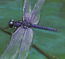 Resting Dragonfly by Kristin Thornton