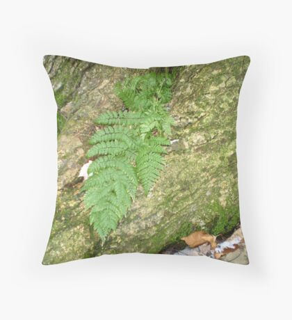 The ferns arrive as the snow leaves Throw Pillow