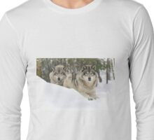 My Heart belongs 2 U - Timber Wolves Long Sleeve T-Shirt