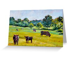 Cows in Pasture Greeting Card