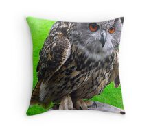 Whoo Throw Pillow