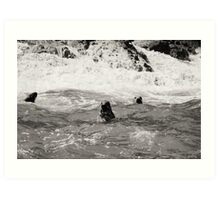Three seals in black and white Art Print