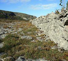 Burren Wall by John Quinn