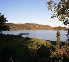 Inchiquin lake morning view 2 by John Quinn