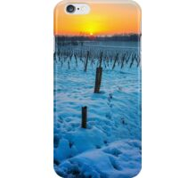 Sunset on snowy vineyard iPhone Case/Skin