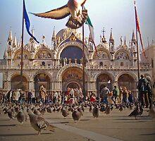 Piazza San Marco by Paolo De Vincentis