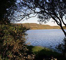 Inchiquin lake morning view 3 by John Quinn
