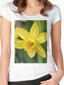 I love daffodils! Women's Fitted Scoop T-Shirt