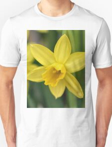 I love daffodils! T-Shirt