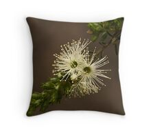 Kunzea Ambigua Throw Pillow